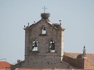 ayuntamiento-campanario-688058